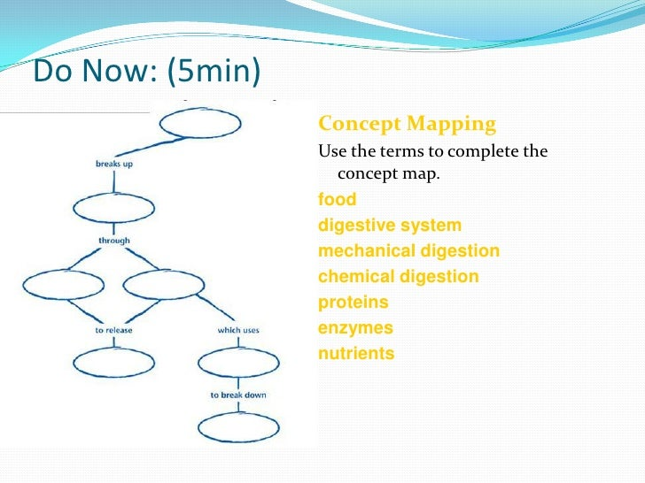 Do Now: (5min)<br />Concept Mapping<br />Use the terms to complete the concept map.<br />food <br />digestive system<br />...