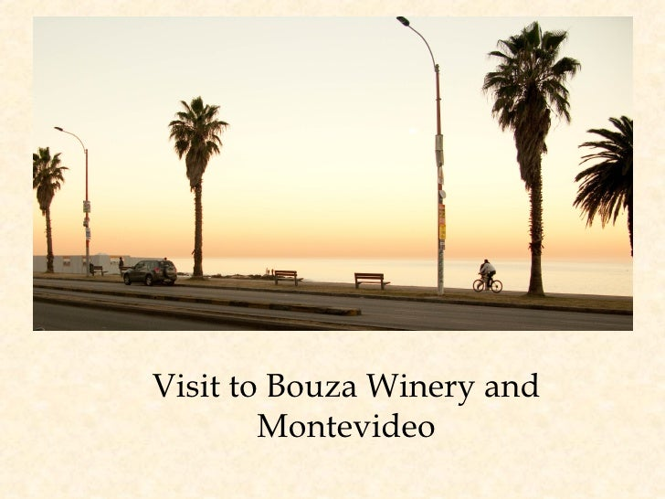 Visit to Bouza Winery and Montevideo