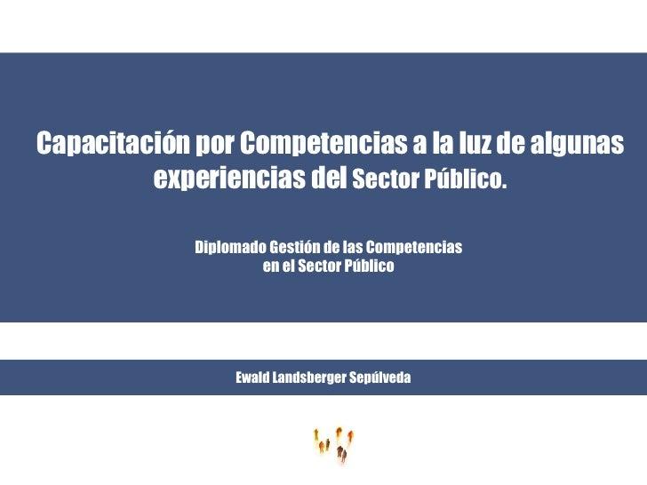 Capacitación por Competencias a la luz de algunas experiencias del  Sector Público. Diplomado Gestión de las Competencias ...