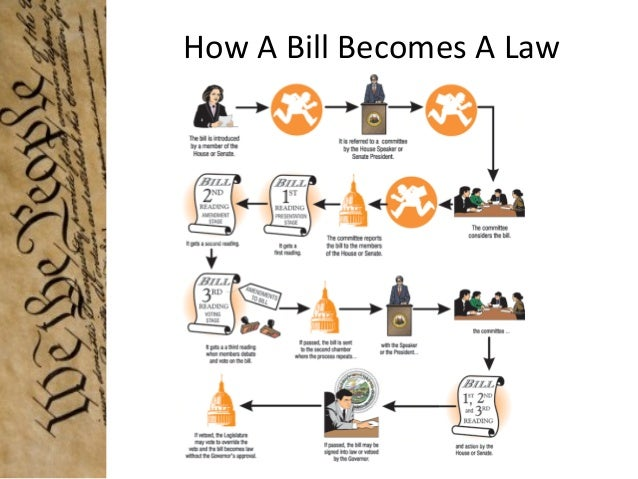 lawmaking process The diagram below shows some of the steps involved in creating a florida state law what is the next step in the lawmaking process a the governor signs the bill into law.