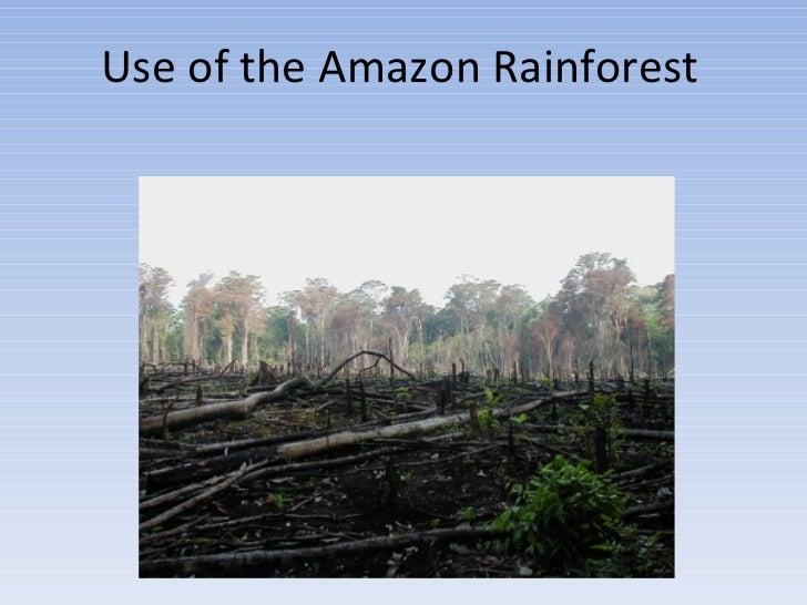 Use of the Amazon Rainforest