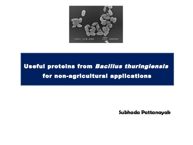 Useful proteins from Bacillus thuringiensis     for non-agricultural applications                            Subhada Patta...