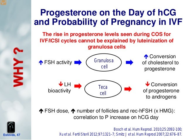 High Progesterone Level Clomid