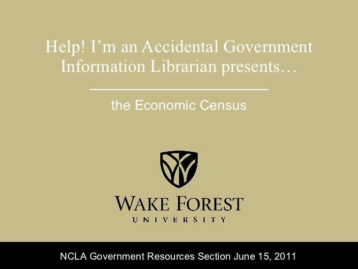 Using the 2007 Economic Census