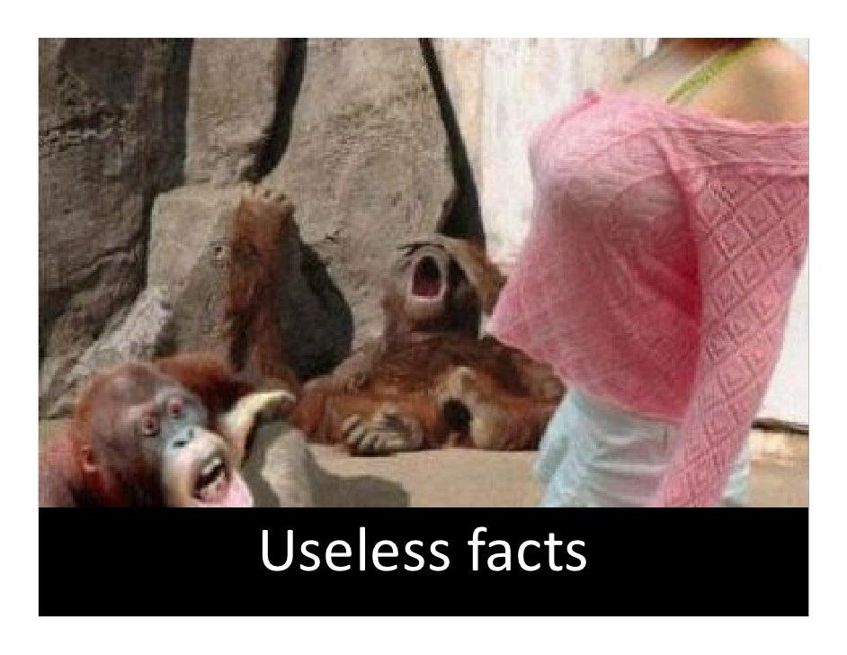 Uselessfacts