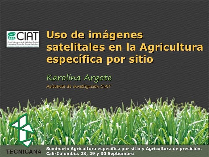 Espacio para  colocar  el Logo               Uso de imágenes               satelitales en la Agricultura               esp...