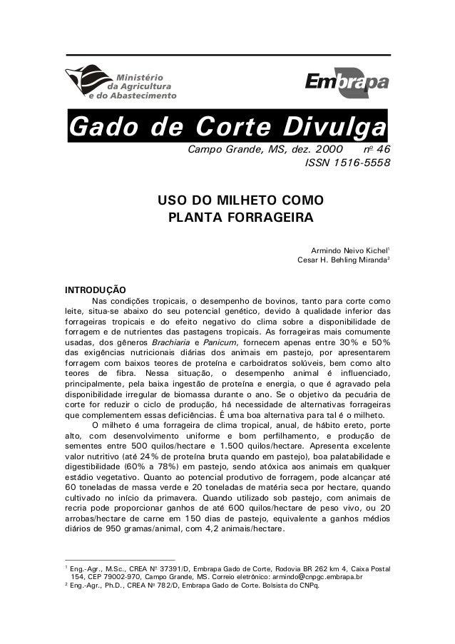 Gado de Corte Divulga Campo Grande, MS, dez. 2000 no 46 ISSN 1516-5558 USO DO MILHETO COMO PLANTA FORRAGEIRA Armindo Neivo...
