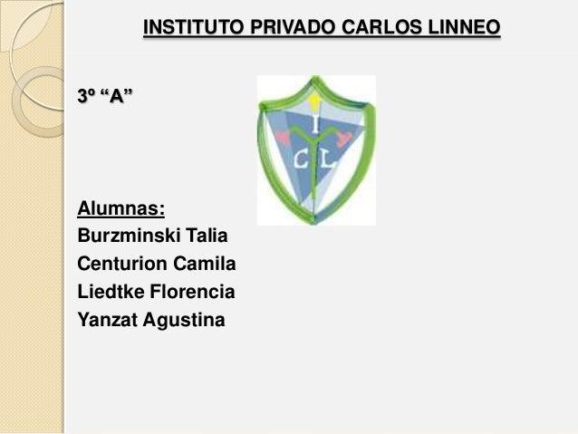 "INSTITUTO PRIVADO CARLOS LINNEO3º ""A""Alumnas:Burzminski TaliaCenturion CamilaLiedtke FlorenciaYanzat Agustina"