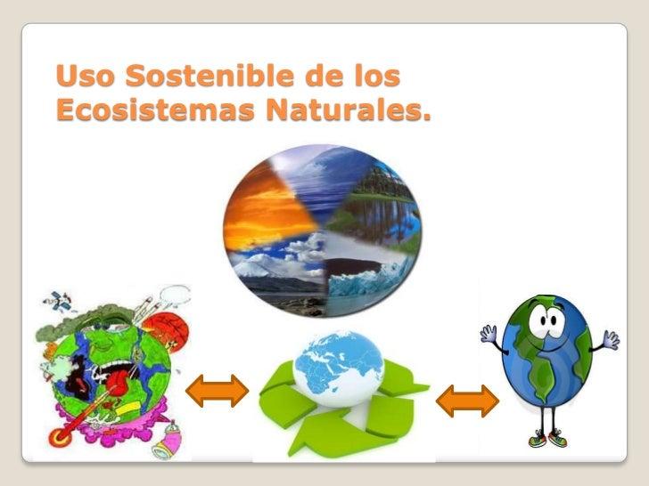 Uso Sostenible de losEcosistemas Naturales.