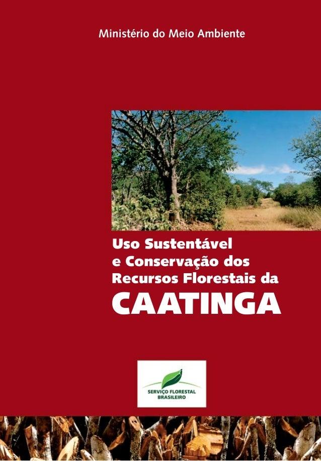 Uso Sustentável e Conservação dos Recursos Florestais da CAATINGA Ministério do Meio Ambiente Brasília/DF Serviço Floresta...