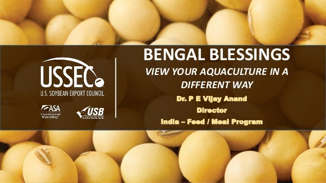 1 BENGAL BLESSINGS VIEW YOUR AQUACULTURE IN A DIFFERENT WAY Dr. P E Vijay Anand Director India – Feed / Meal Program