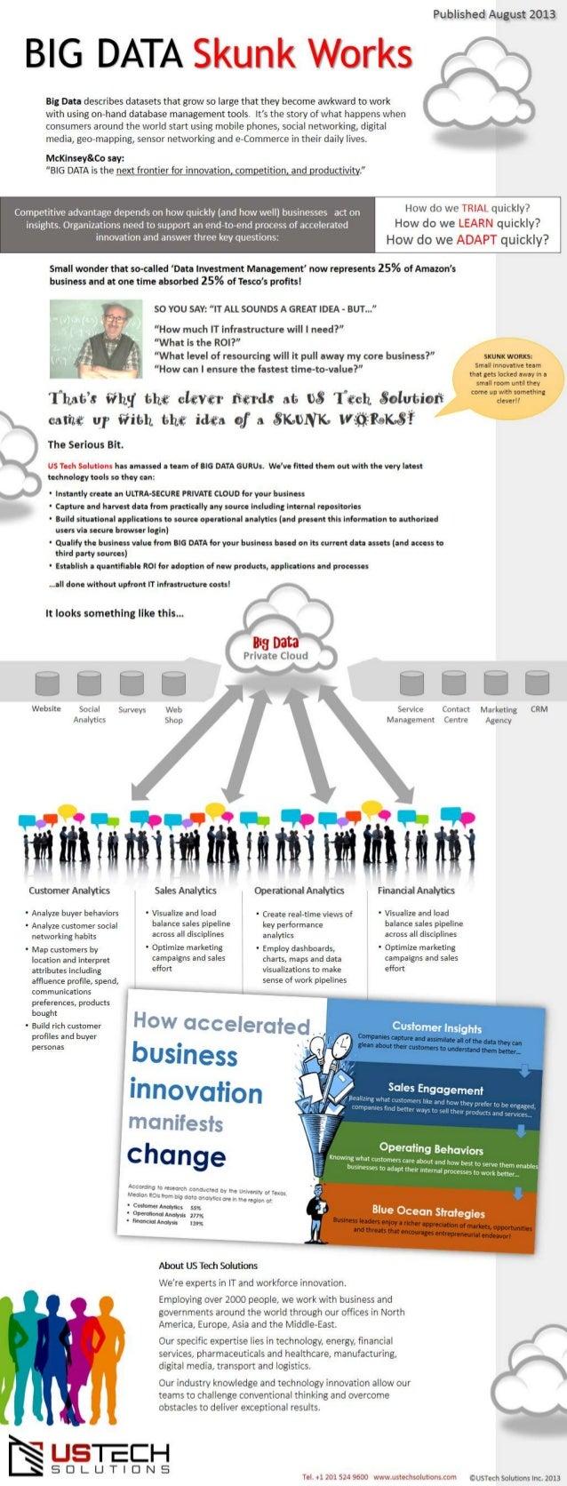 BIG DATA Skunk Works Service Outline (Infographic)