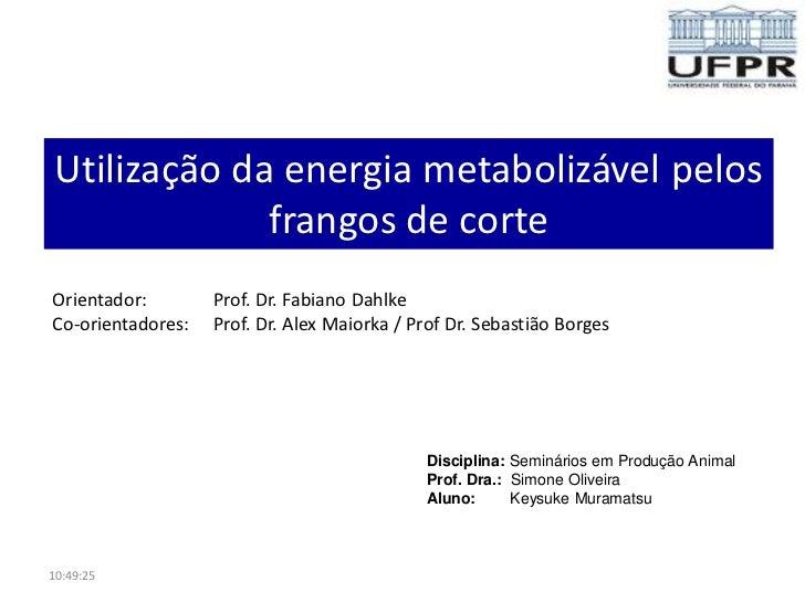 Utilização da energia metabolizável pelos              frangos de corteOrientador:        Prof. Dr. Fabiano DahlkeCo-orien...