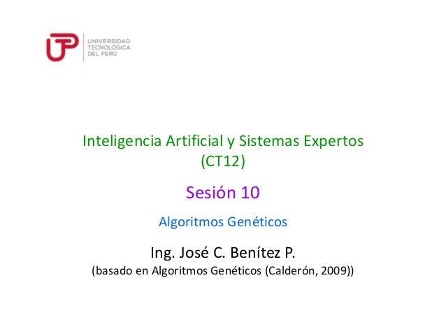 Ing. José C. Benítez P. (basado en Algoritmos Genéticos (Calderón, 2009)) Inteligencia Artificial y Sistemas Expertos (CT1...