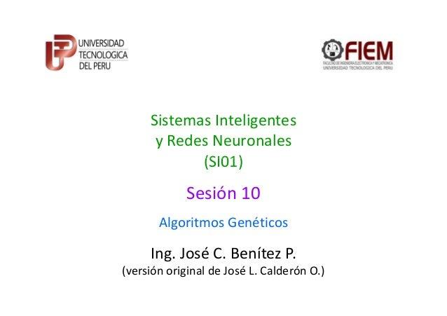 Sistemas Inteligentesy Redes Neuronales(SI01)Ing. José C. Benítez P.(versión original de José L. Calderón O.)(SI01)Algorit...