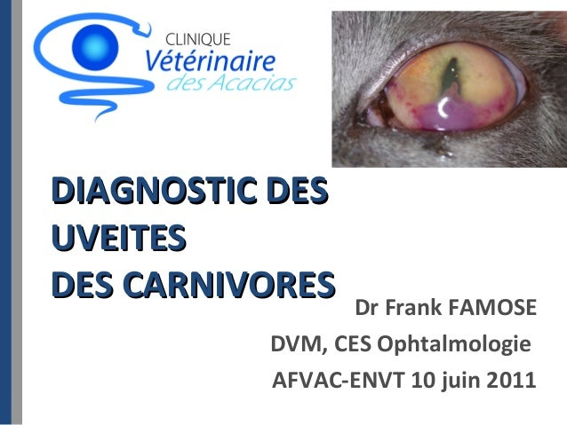 DIAGNOSTIC DES UVEITES DES CARNIVORES  Dr Frank FAMOSE DVM, CES Ophtalmologie AFVAC-ENVT 10 juin 2011