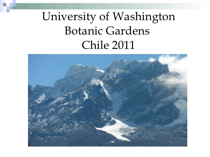 University of Washington Botanic Gardens  Chile 2011