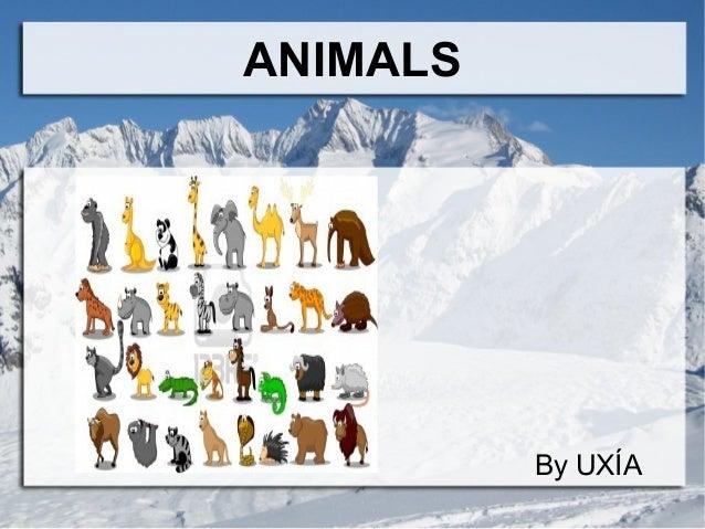 Uxía's animals presentation