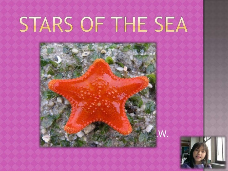 Stars of the sea<br />                                               By V.W.<br />.<br />