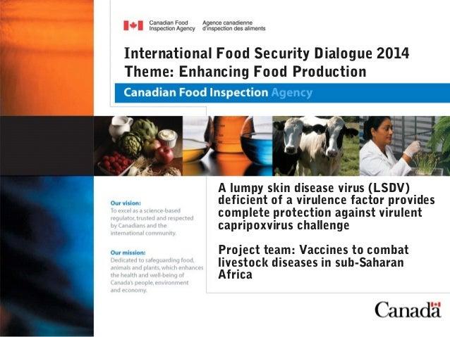 A lumpy skin disease virus (LSDV) deficient of a virulence factor provides complete protection against virulent capripoxvi...