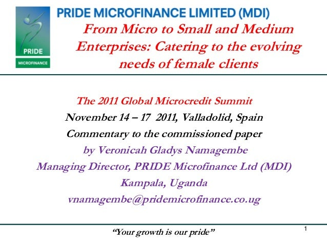 From Micro to Small and Medium       Enterprises: Catering to the evolving             needs of female clients      The 20...