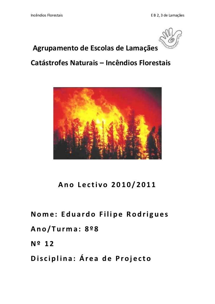 Agrupamento de Escolas de Lamaçães <br />Catástrofes Naturais – Incêndios Florestais<br />Ano Lectivo 2010/2011<br />Nome:...