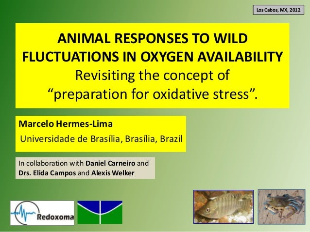 "Los Cabos, MX, 2012    ANIMAL RESPONSES TO WILDFLUCTUATIONS IN OXYGEN AVAILABILITY       Revisiting the concept of   ""prep..."