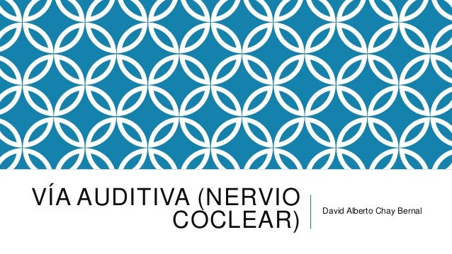 VÍA AUDITIVA (NERVIO COCLEAR)  David Alberto Chay Bernal