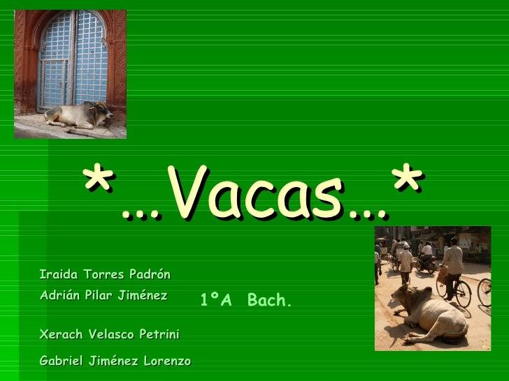 *…Vacas…* Iraida Torres Padrón Adrián Pilar Jiménez  Xerach Velasco Petrini  Gabriel Jiménez Lorenzo   1ºA  Bach.