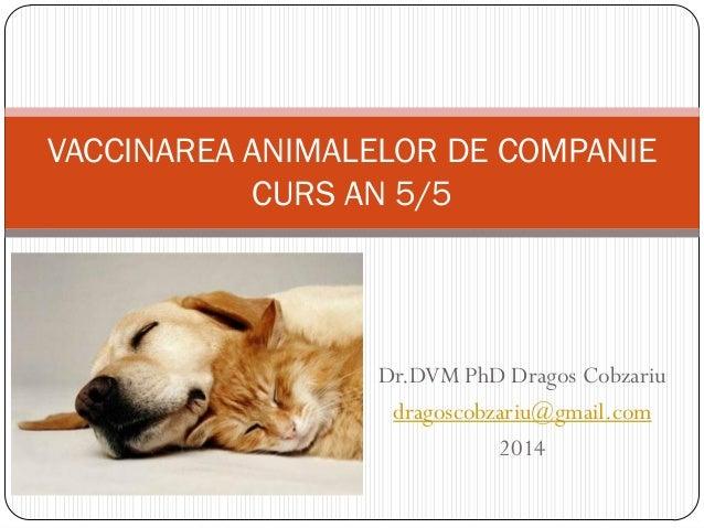 Dr.DVM PhD Dragos Cobzariu dragoscobzariu@gmail.com 2014 VACCINAREA ANIMALELOR DE COMPANIE CURS AN 5/5