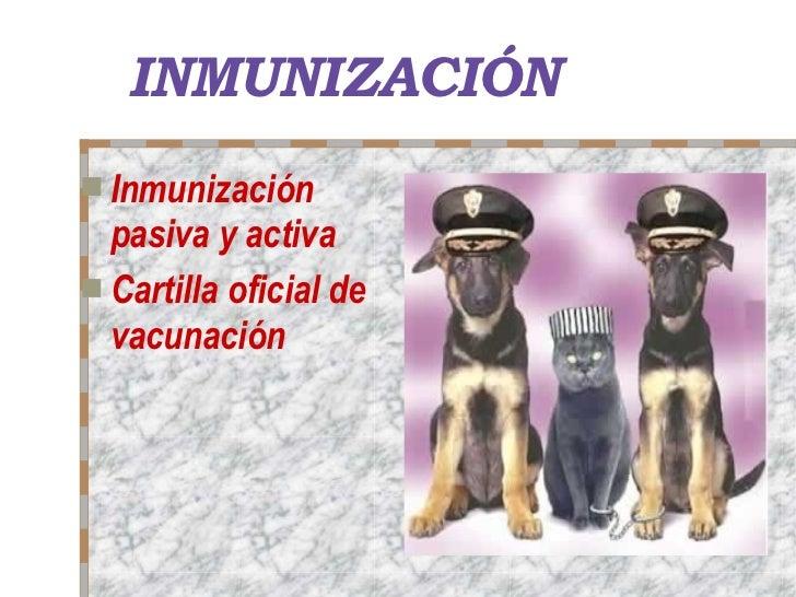 INMUNIZACIÓN <ul><li>Inmunización pasiva y activa </li></ul><ul><li>Cartilla oficial de vacunación </li></ul>