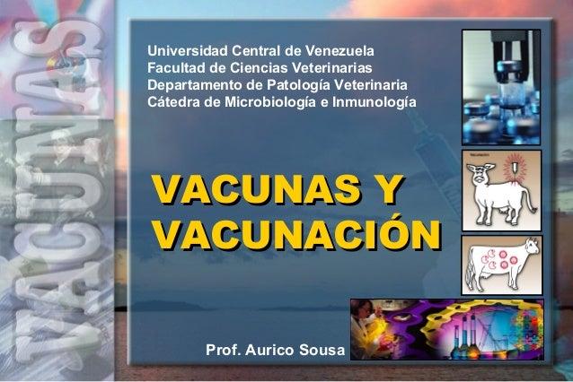 VACUNAS YVACUNAS Y VACUNACIÓNVACUNACIÓN Universidad Central de Venezuela Facultad de Ciencias Veterinarias Departamento de...