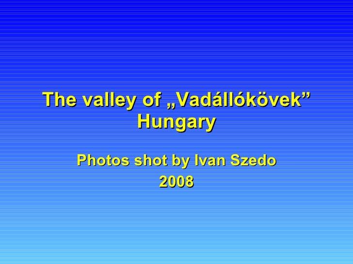 """The  v alley  of """" Vadállókövek """"  Hungary Photos shot by Ivan Szedo 2008"""
