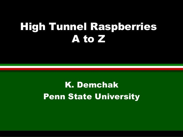 High Tunnel Raspberries A to Z