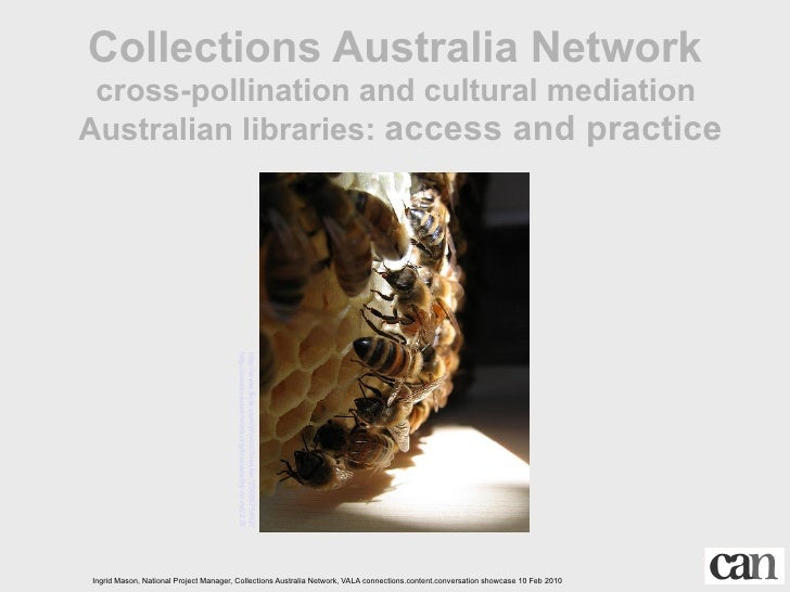 Collections Australia Network  cross-pollination and cultural mediation Australian libraries: access and practice         ...