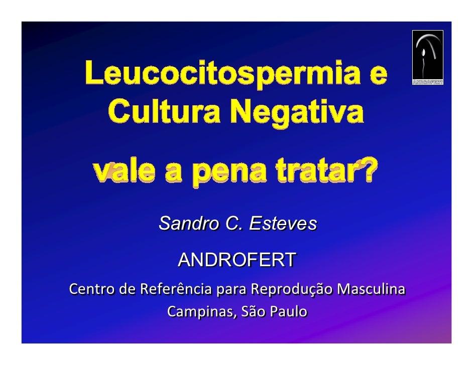 Vale a pena tratar leucocitospermia com cultura negativa   sandro esteves (final)