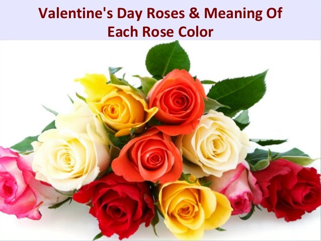 Valentine 39 s day roses meaning of each rose color for What colors make rose