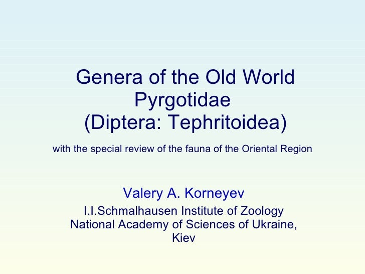 Genera of the Old World Pyrgotidae  (Diptera: Tephritoidea) with the special review of the fauna of the Oriental Region   ...