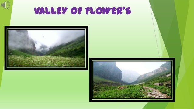 Valley of Flower's