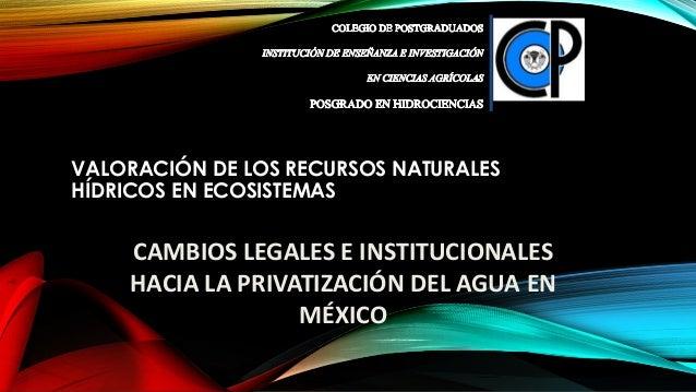 VALORACIÓN DE LOS RECURSOS NATURALES HÍDRICOS EN ECOSISTEMAS CAMBIOS LEGALES E INSTITUCIONALES HACIA LA PRIVATIZACIÓN DEL ...