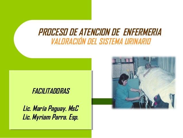 PROCESO DE ATENCION DE ENFERMERIA VALORACIÓN DEL SISTEMA URINARIO  FACILITADORAS FACILITADORAS Lic. María Paguay. MsC Lic....
