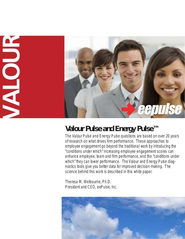 VALOUR         Valour Pulse and Energy Pulse™         The Valour Pulse and Energy Pulse questions are based on over 20 yea...