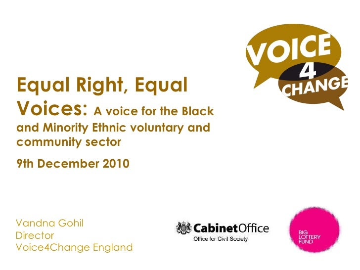 Vandna Gohil Director Voice4Change England A national voice for the Black and Minority Ethnic voluntary and community sect...