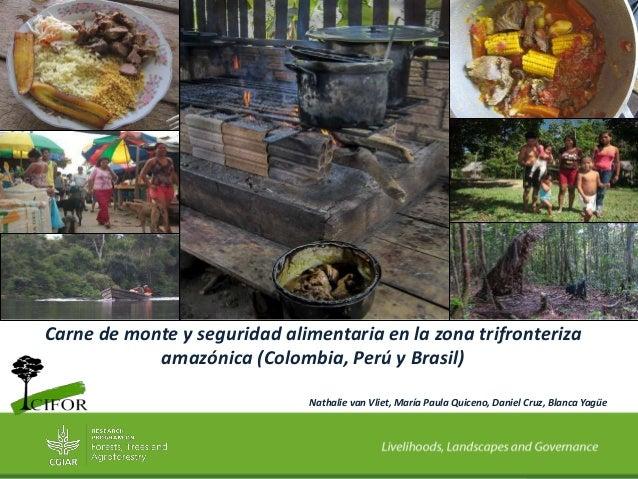 Carne de monte y seguridad alimentaria en la zona trifronteriza amazónica (Colombia, Perú y Brasil) Nathalie van Vliet, Ma...