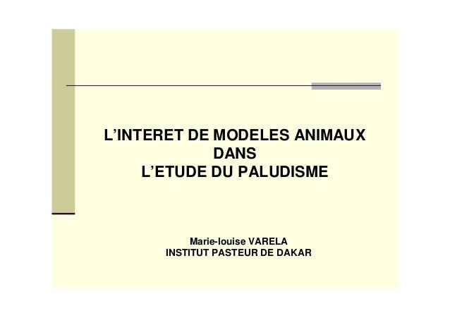 L'INTERET DE MODELES ANIMAUX             DANS     L'ETUDE DU PALUDISME           Marie-louise VARELA      INSTITUT PASTEUR...