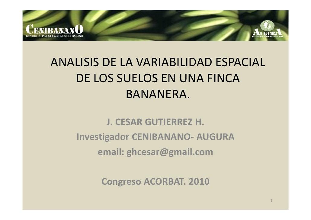 ANALISIS DE LA VARIABILIDAD ESPACIAL   DE LOS SUELOS EN UNA FINCA             BANANERA.           J. CESAR GUTIERREZ H.   ...