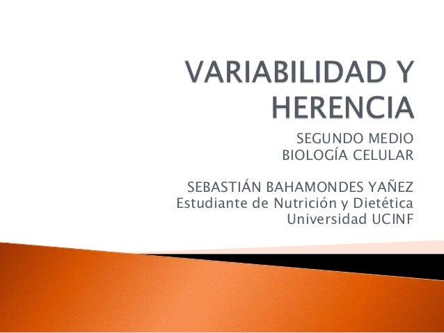 SEGUNDO MEDIO BIOLOGÍA CELULAR SEBASTIÁN BAHAMONDES YAÑEZ Estudiante de Nutrición y Dietética Universidad UCINF