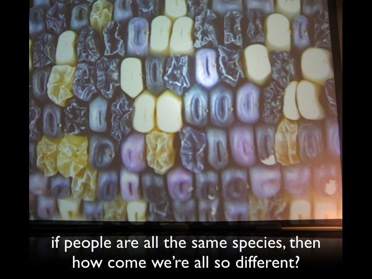 if people are all the same species, then     how come we're all so different?