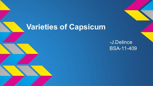 Varieties of Capsicum -J.Delince BSA-11-409