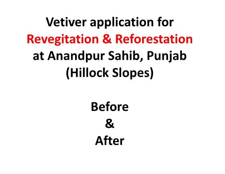 Vetiver application for Revegitation & Reforestation at Anandpur Sahib, Punjab (Hillock Slopes) Before & After